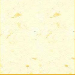 Banana Paper