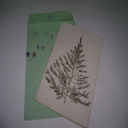 handmade paper cards